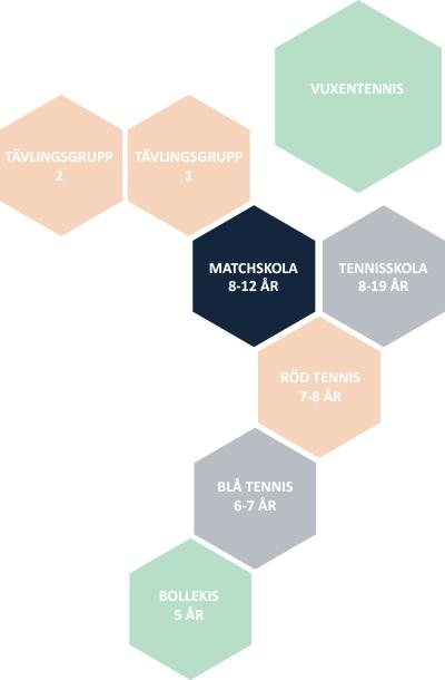 Matchskola orgmodell